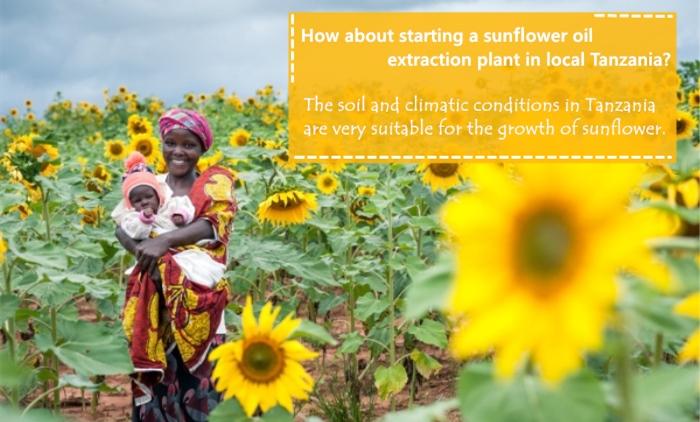 sunflower oil processing in tanzania