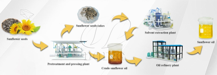 sunflower oil production process