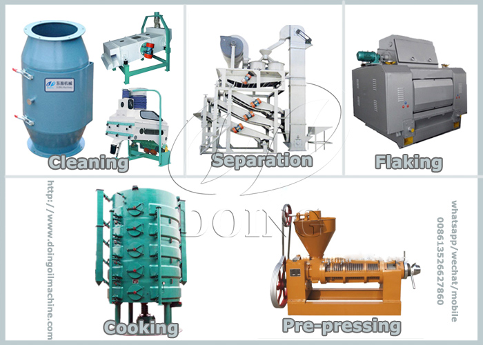 sunflower oil press process