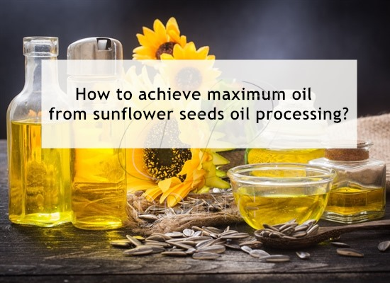 How to achieve maximum oil from sunflower seeds oil processing?